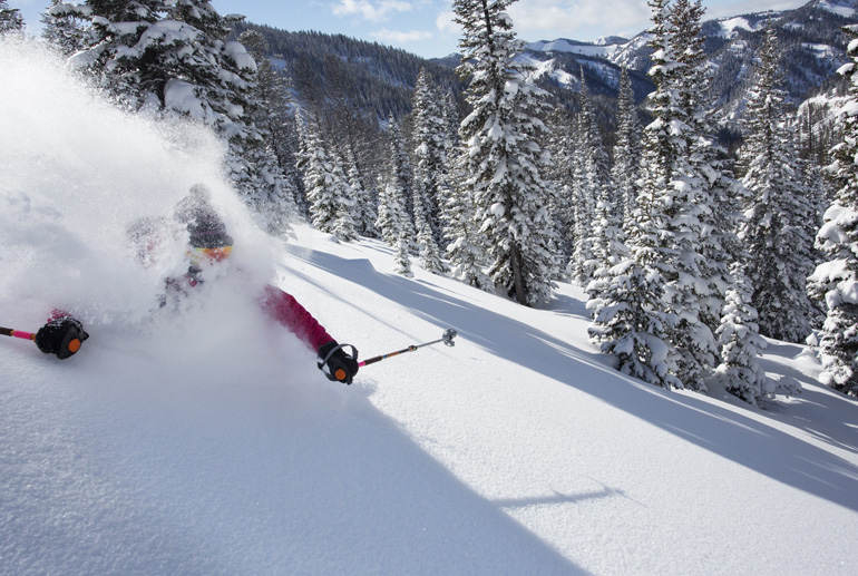 10 Powder Skiing Tips D.Stubbs