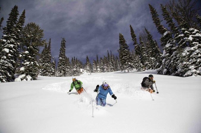 Ski Jackson Hole Powder